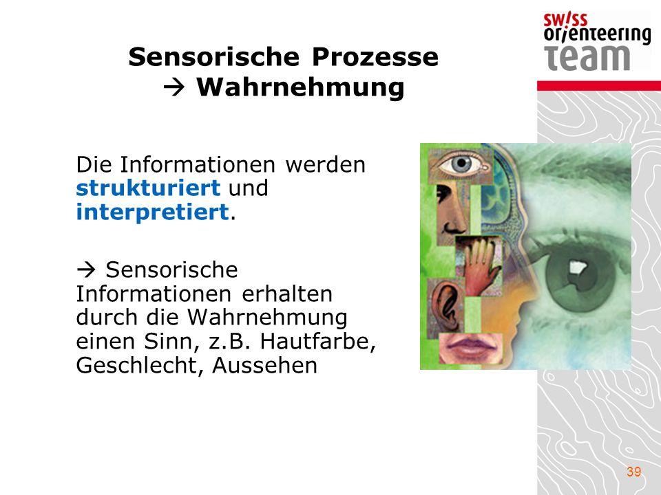 Sensorische Prozesse  Wahrnehmung
