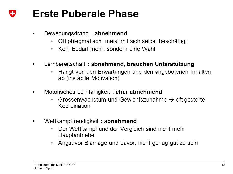 Erste Puberale Phase Bewegungsdrang : abnehmend