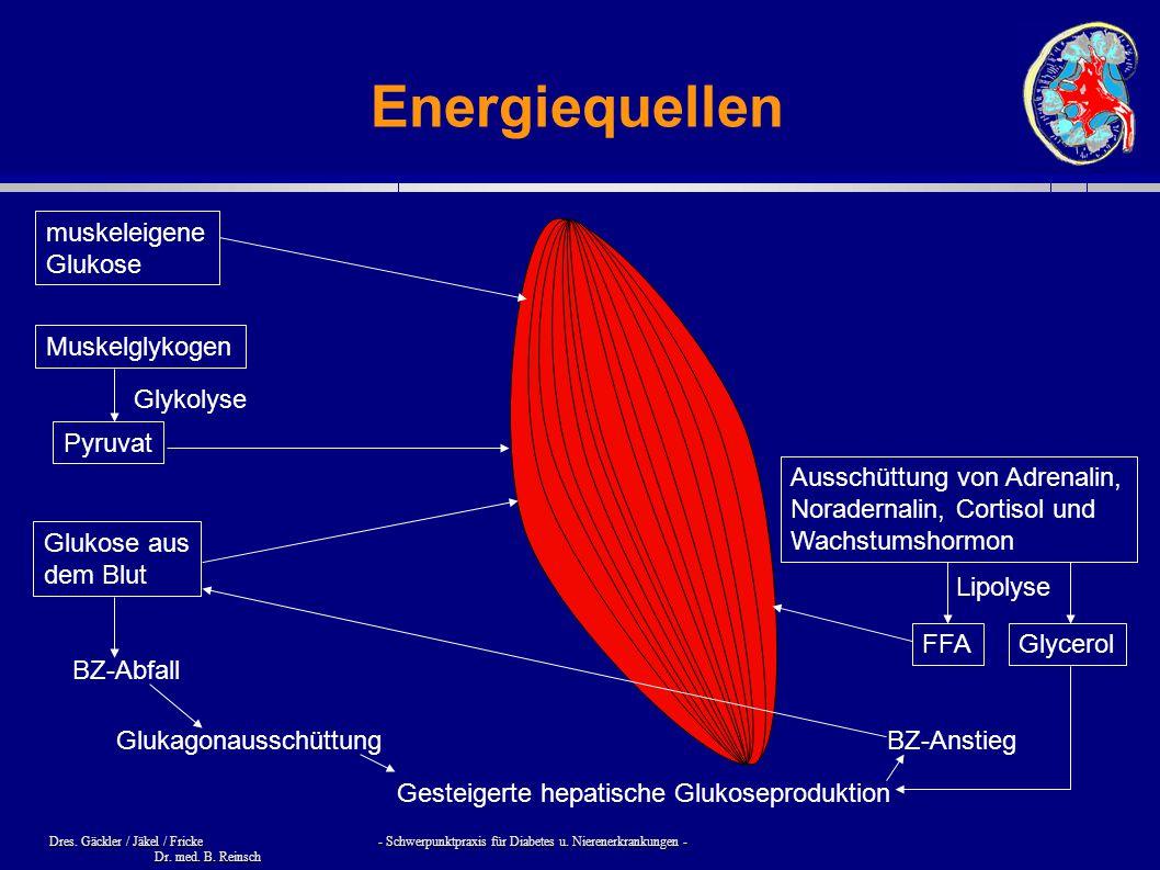Energiequellen muskeleigene Glukose Muskelglykogen Glykolyse Pyruvat