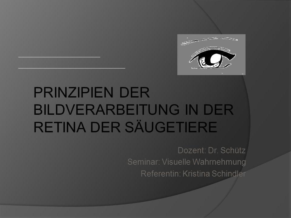 Prinzipien der Bildverarbeitung in der Retina Der Säugetiere