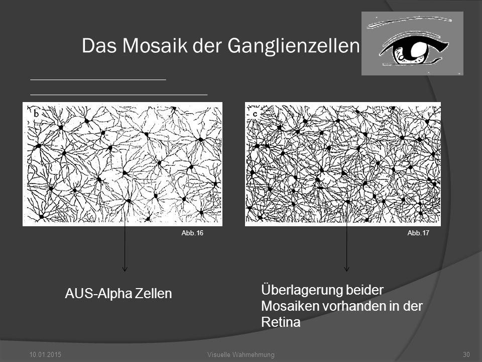 Das Mosaik der Ganglienzellen