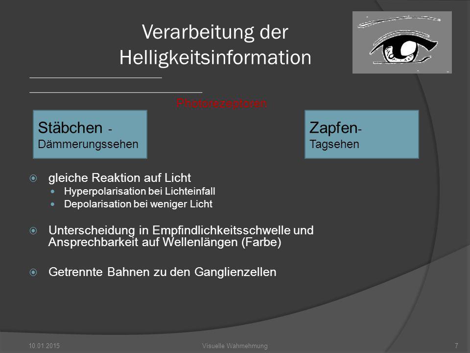 Verarbeitung der Helligkeitsinformation