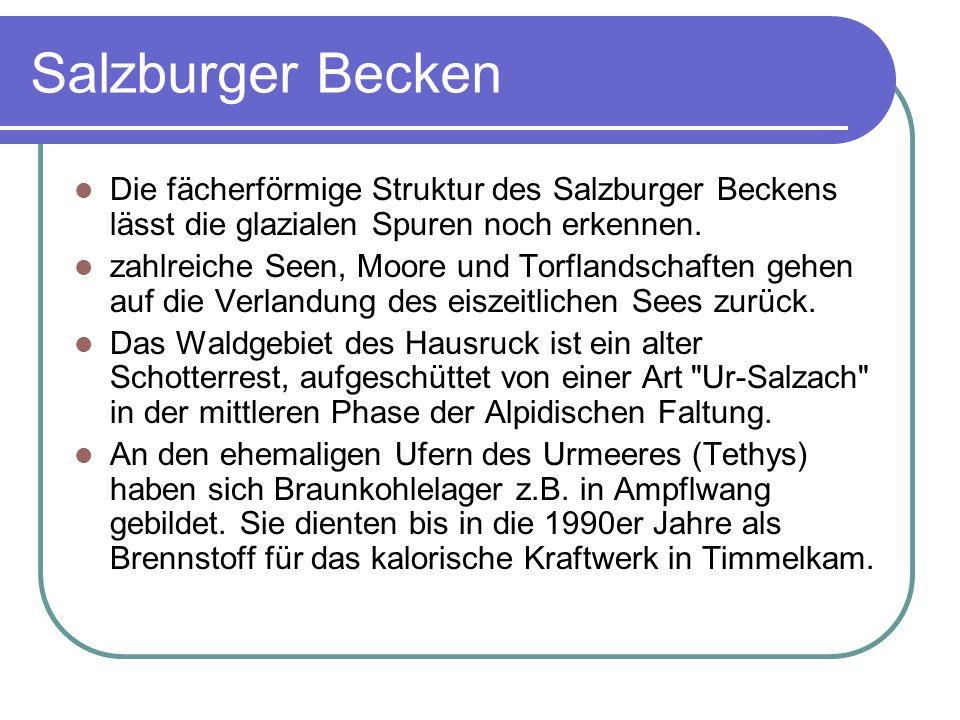 Salzburger Becken Die fächerförmige Struktur des Salzburger Beckens lässt die glazialen Spuren noch erkennen.