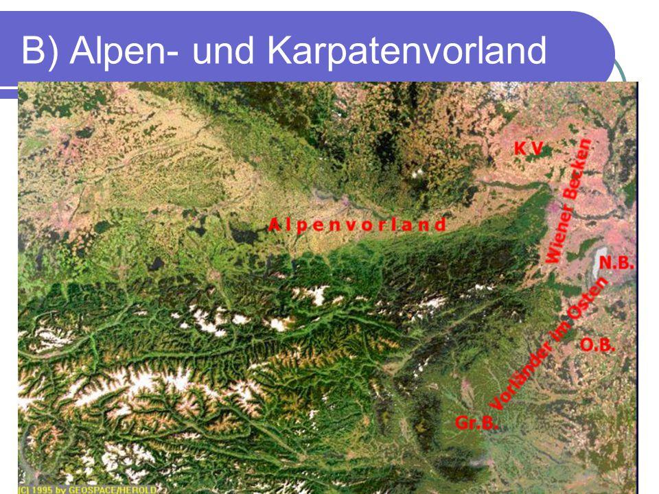 B) Alpen- und Karpatenvorland