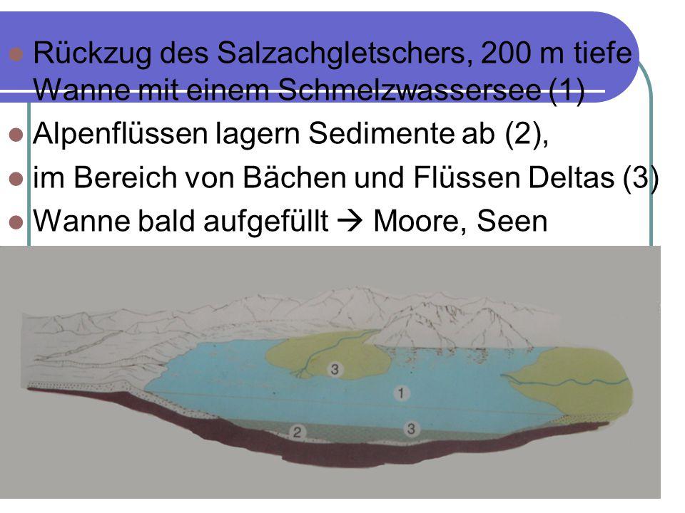 Rückzug des Salzachgletschers, 200 m tiefe Wanne mit einem Schmelzwassersee (1)