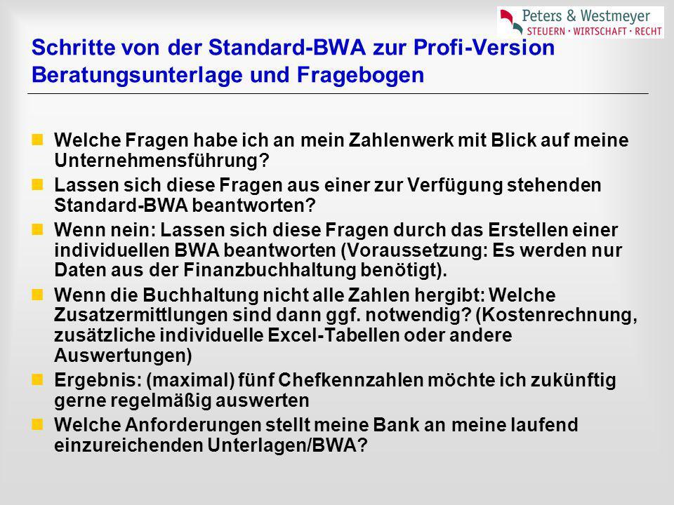 Schritte von der Standard-BWA zur Profi-Version Beratungsunterlage und Fragebogen