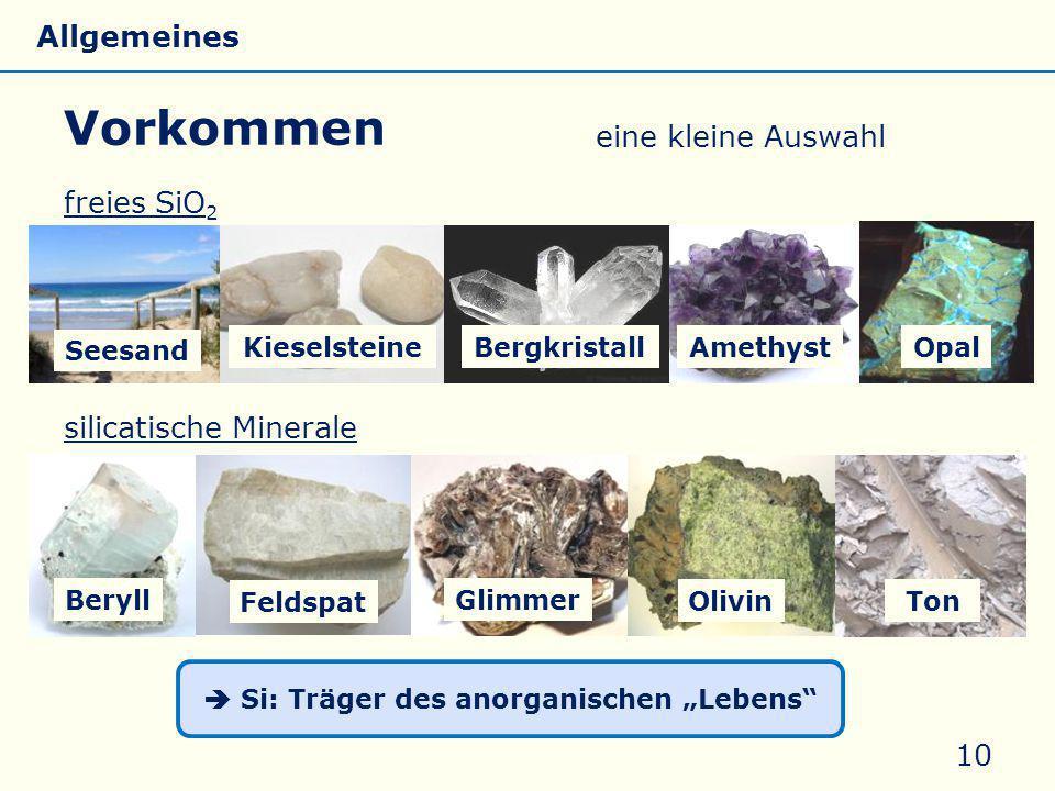 """ Si: Träger des anorganischen """"Lebens"""
