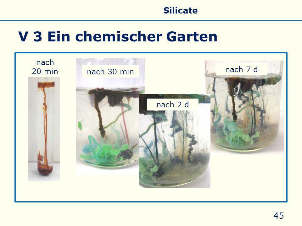 V 3 Ein chemischer Garten