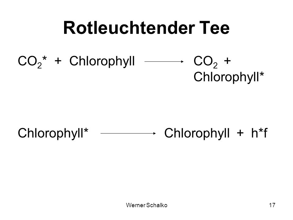 Rotleuchtender Tee CO2* + Chlorophyll CO2 + Chlorophyll*