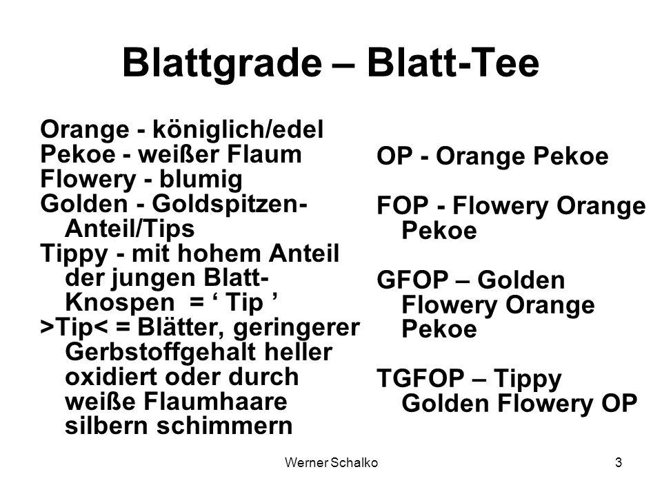 Blattgrade – Blatt-Tee