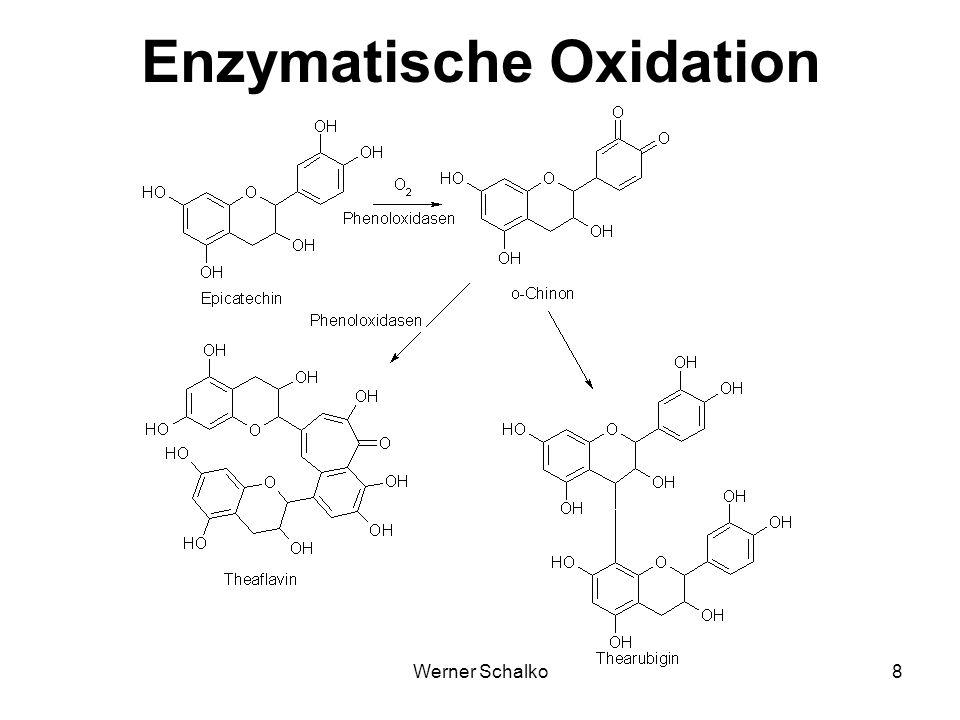 Enzymatische Oxidation