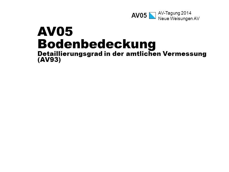 AV05 AV05 Bodenbedeckung Detaillierungsgrad in der amtlichen Vermessung (AV93)
