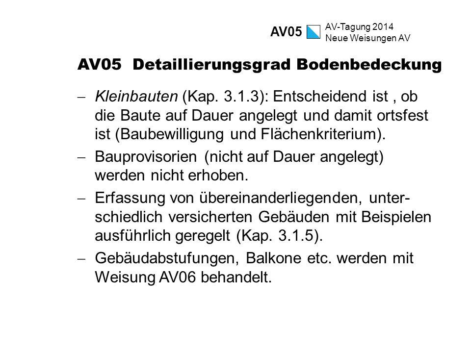 AV05 Detaillierungsgrad Bodenbedeckung