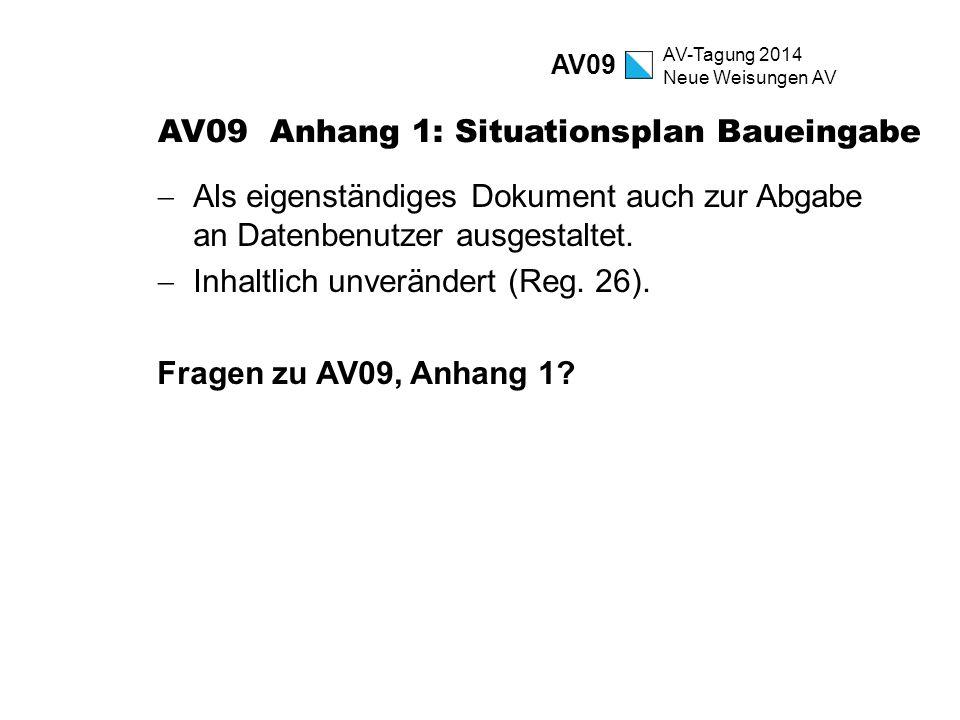 AV09 Anhang 1: Situationsplan Baueingabe