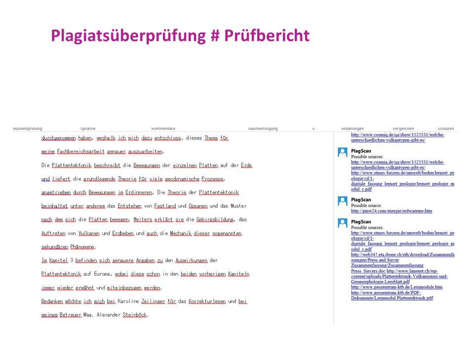 Plagiatsüberprüfung # Prüfbericht