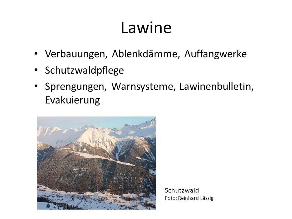 Lawine Verbauungen, Ablenkdämme, Auffangwerke Schutzwaldpflege