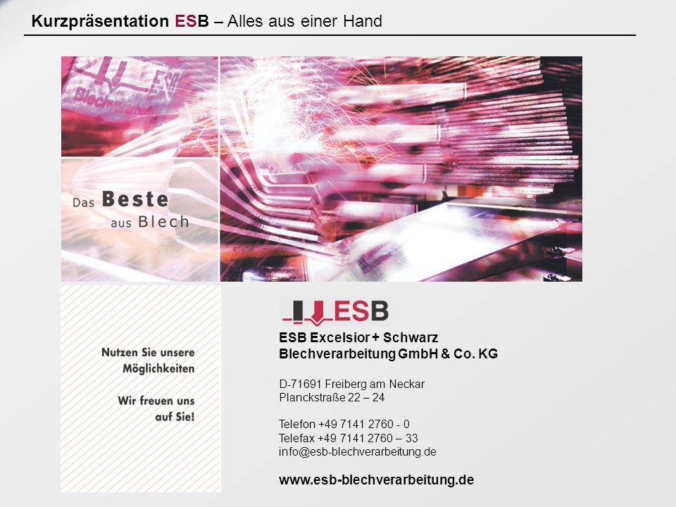 Kurzpräsentation ESB – Alles aus einer Hand