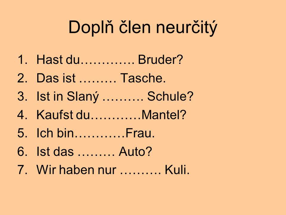 Doplň člen neurčitý Hast du…………. Bruder Das ist ……… Tasche.