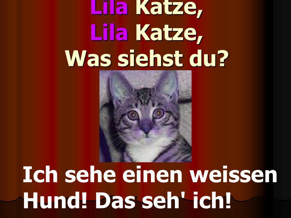 Lila Katze, Lila Katze, Was siehst du