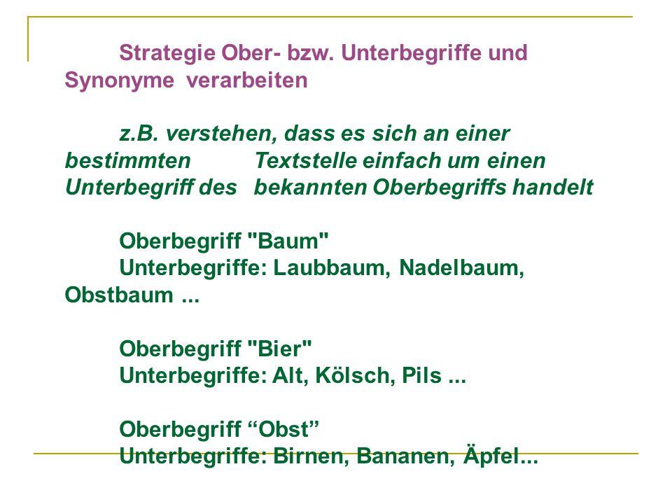 Strategie Ober- bzw. Unterbegriffe und Synonyme verarbeiten