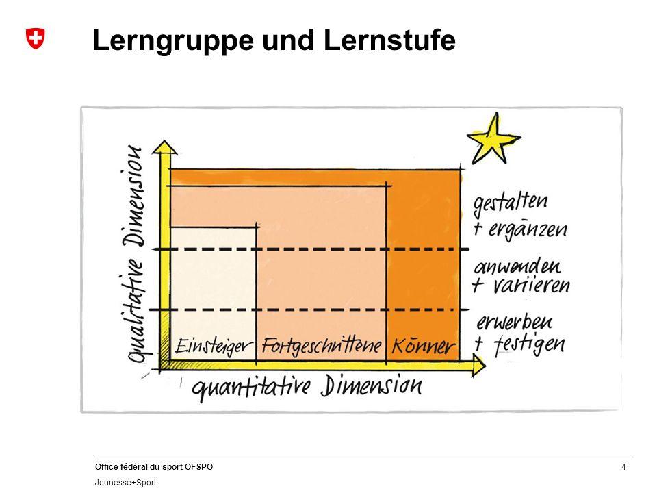Lerngruppe und Lernstufe