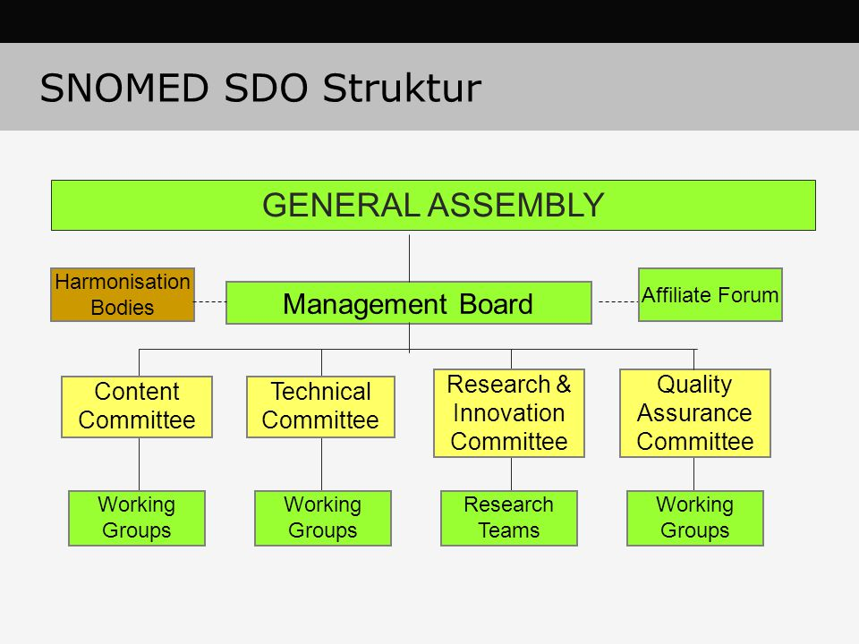SNOMED SDO Struktur GENERAL ASSEMBLY Management Board