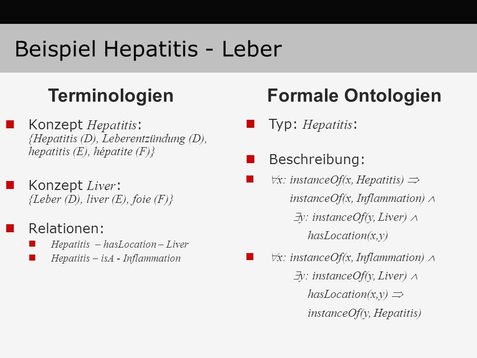 Beispiel Hepatitis - Leber