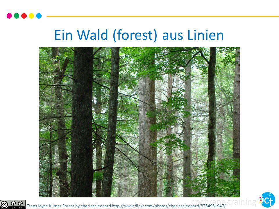 Ein Wald (forest) aus Linien