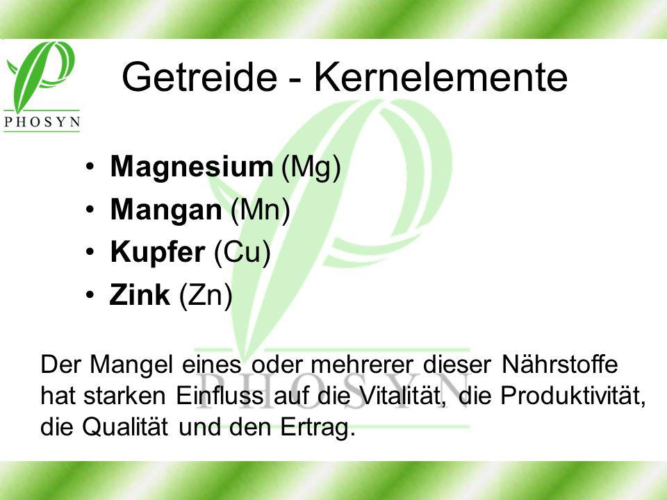 Getreide - Kernelemente