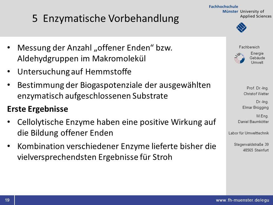 5 Enzymatische Vorbehandlung