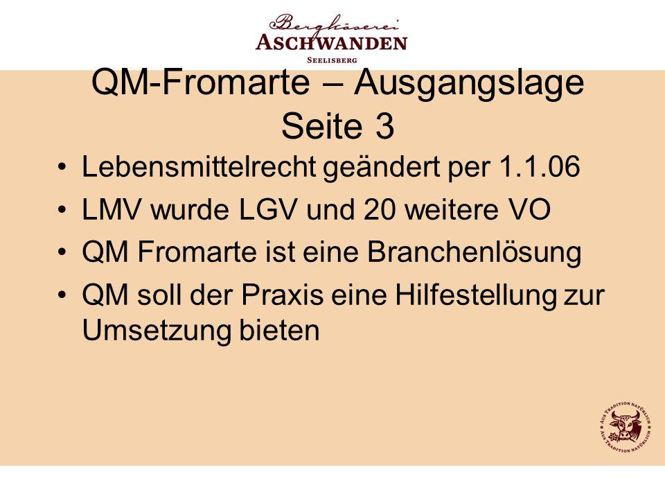 QM-Fromarte – Ausgangslage Seite 3