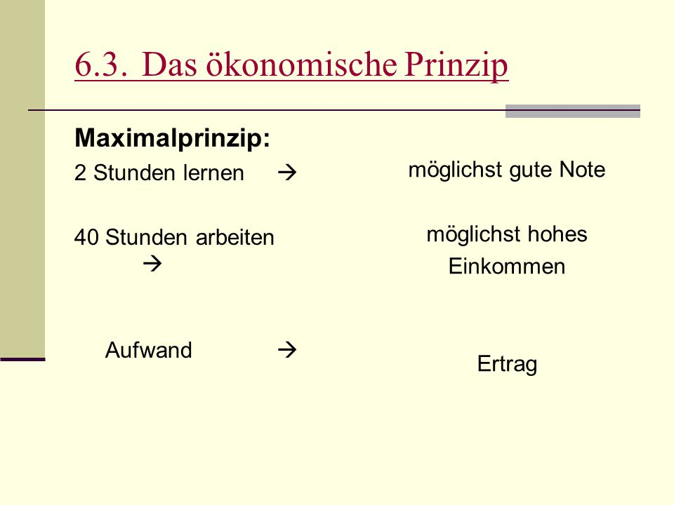 6.3. Das ökonomische Prinzip