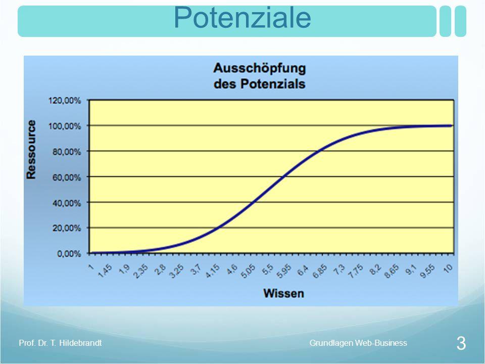 Potenziale Prof. Dr. T. Hildebrandt Grundlagen Web-Business