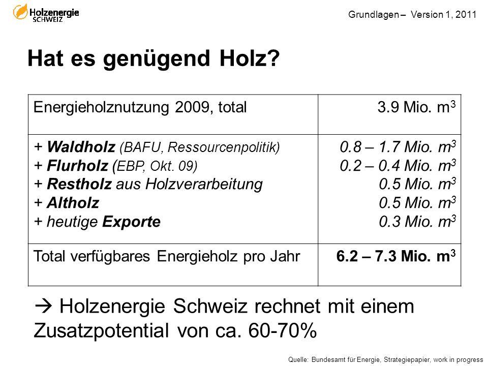 Hat es genügend Holz Energieholznutzung 2009, total. 3.9 Mio. m3. + Waldholz (BAFU, Ressourcenpolitik)