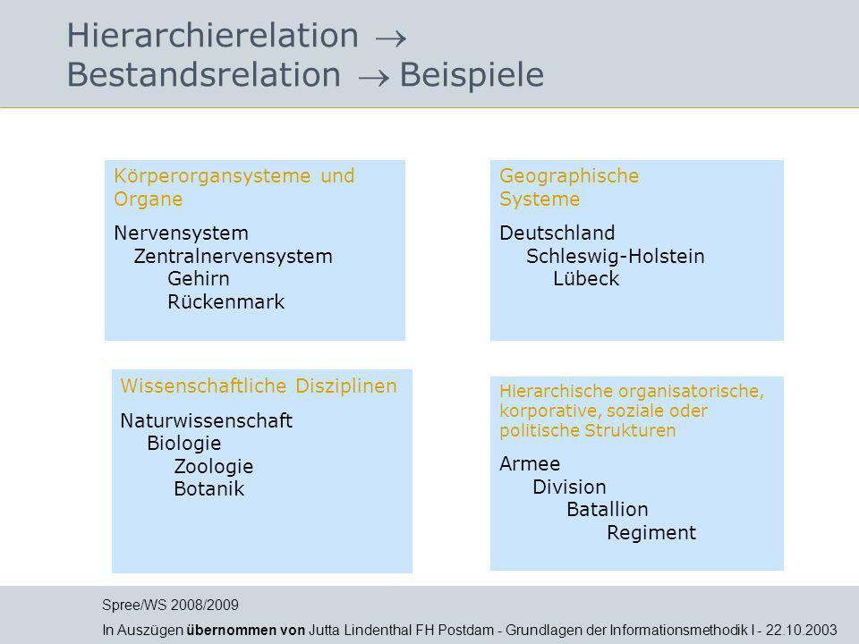 Hierarchierelation  Bestandsrelation  Beispiele