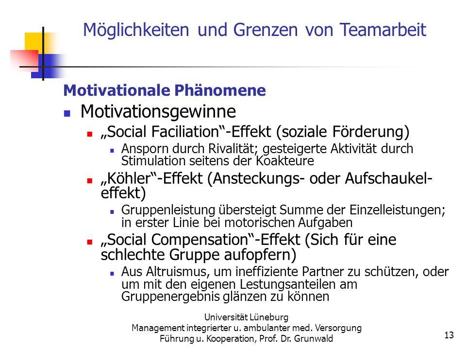 Motivationale Phänomene