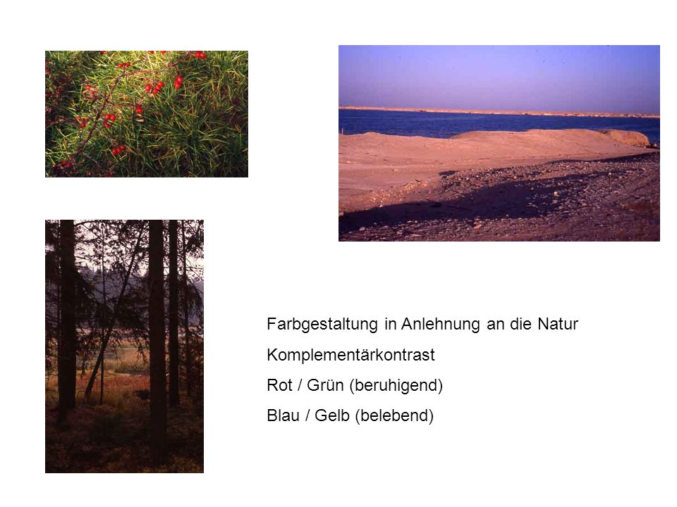 Farbgestaltung in Anlehnung an die Natur