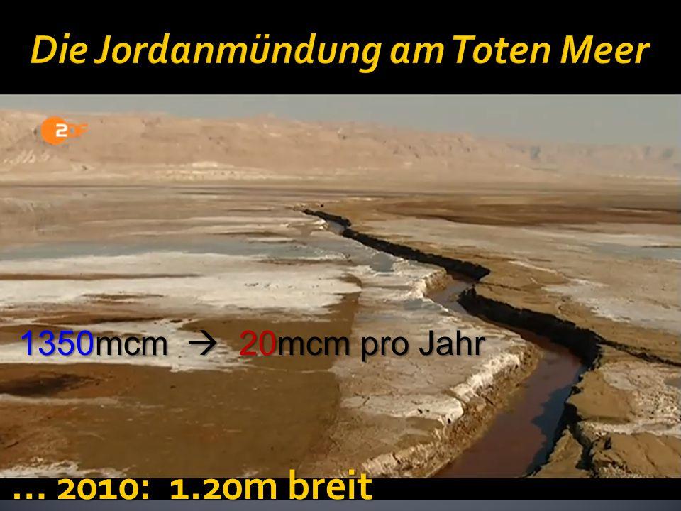 Die Jordanmündung am Toten Meer