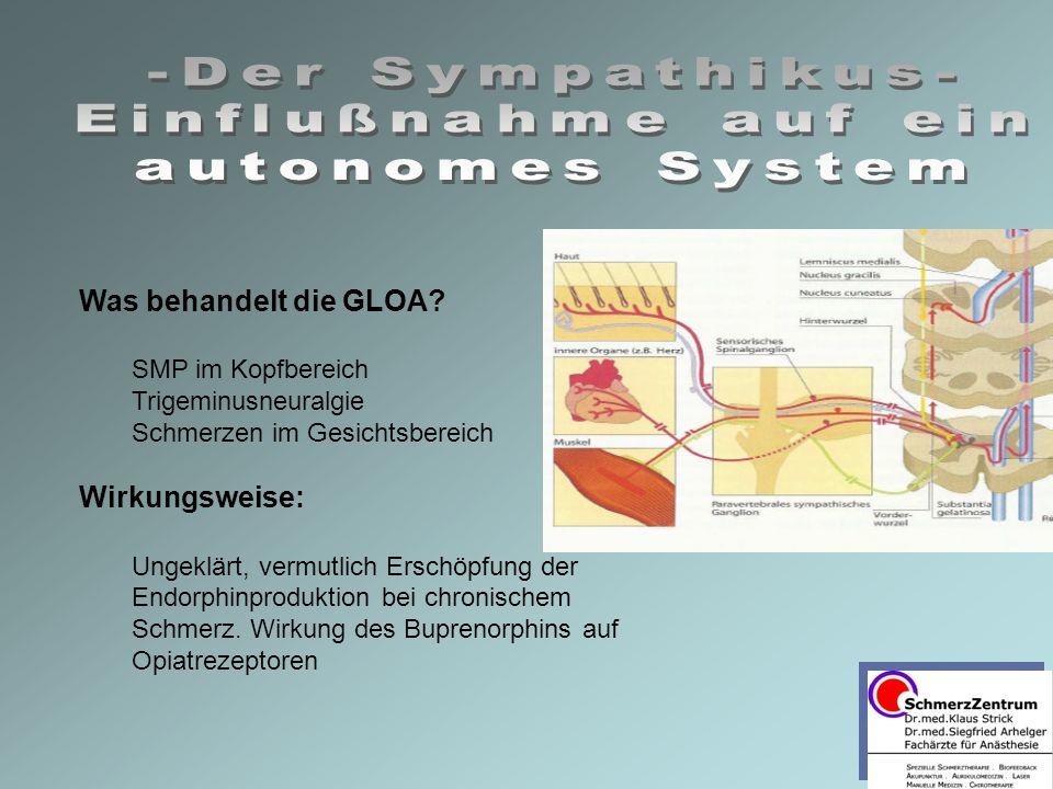 -Der Sympathikus- Einflußnahme auf ein autonomes System