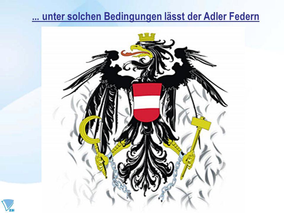 ... unter solchen Bedingungen lässt der Adler Federn