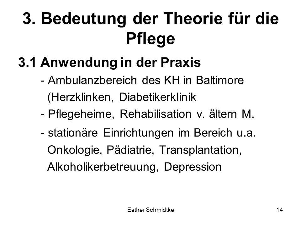 3. Bedeutung der Theorie für die Pflege