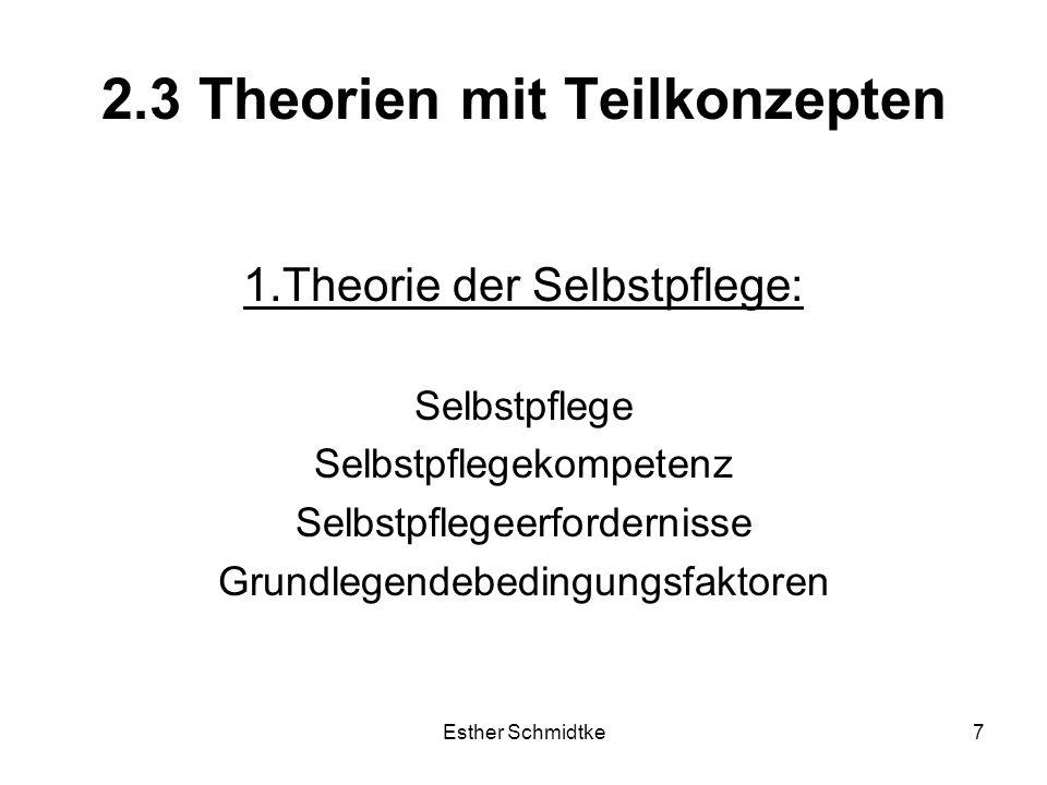 2.3 Theorien mit Teilkonzepten