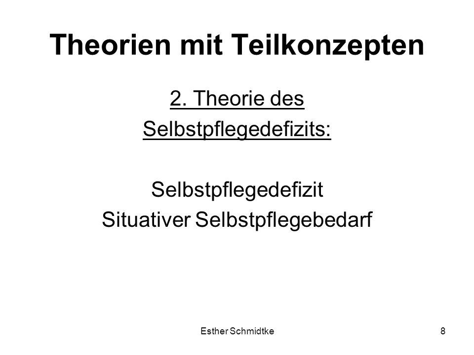 Theorien mit Teilkonzepten