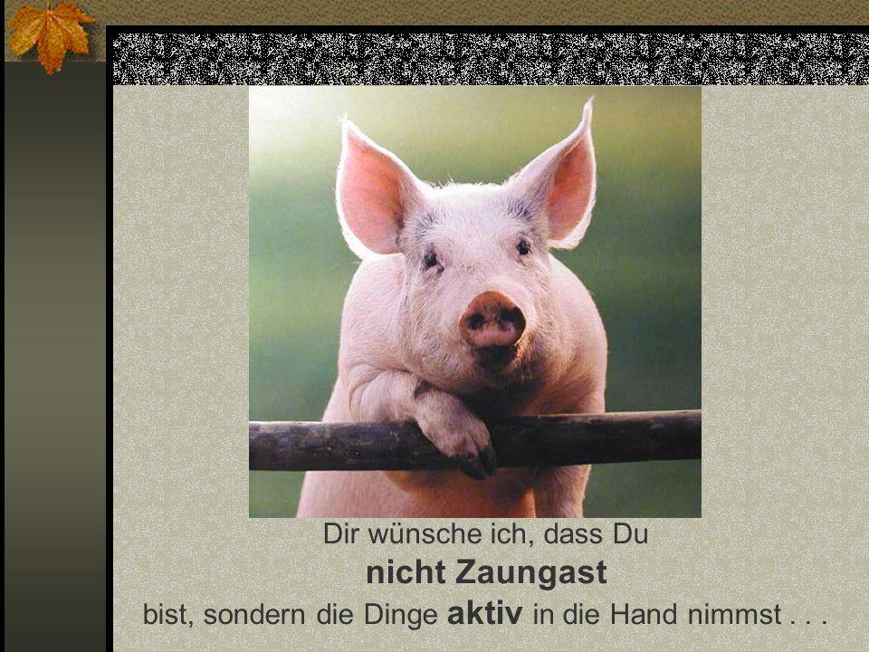 Funny-Powerpoints.net Dir wünsche ich, dass Du nicht Zaungast bist, sondern die Dinge aktiv in die Hand nimmst . . .