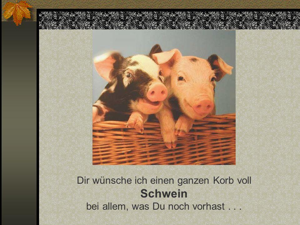 Funny-Powerpoints.net Dir wünsche ich einen ganzen Korb voll Schwein bei allem, was Du noch vorhast . . .