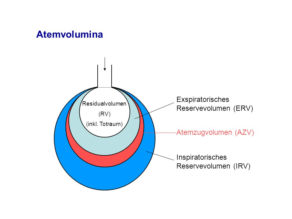 Atemvolumina Exspiratorisches Reservevolumen (ERV)