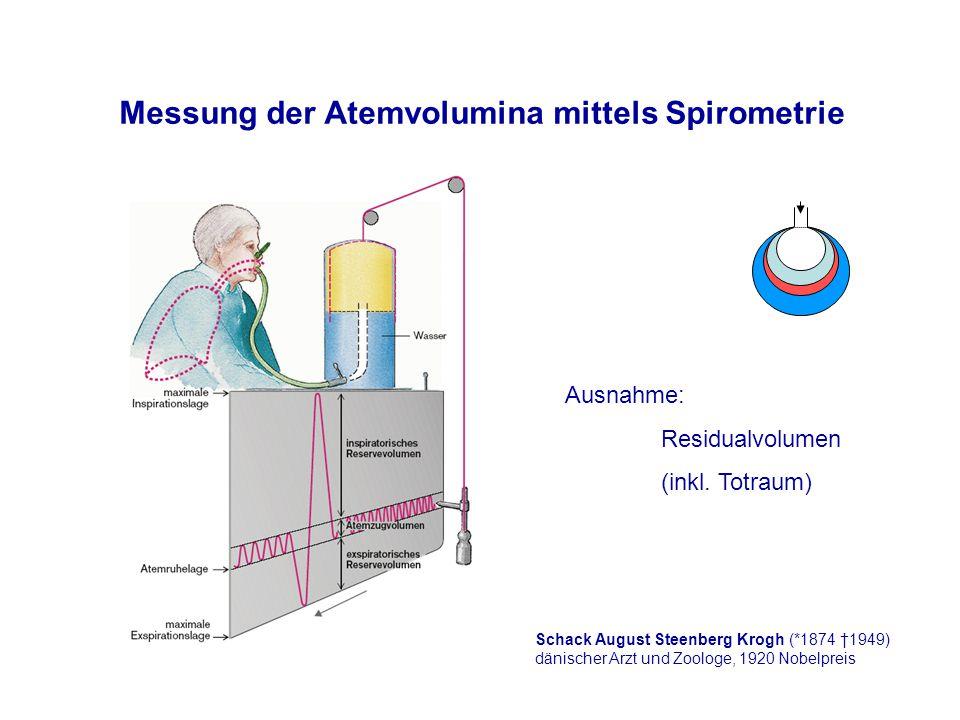 Messung der Atemvolumina mittels Spirometrie