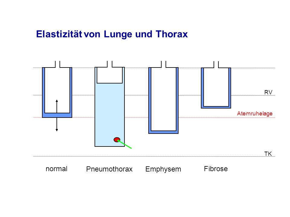 Elastizität von Lunge und Thorax