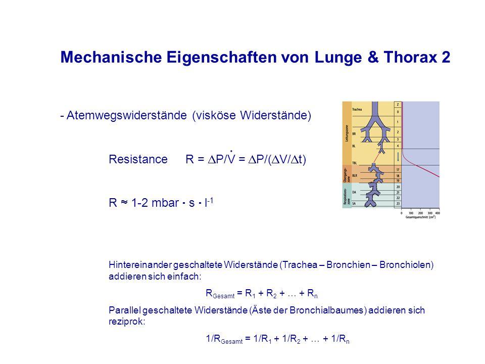 Mechanische Eigenschaften von Lunge & Thorax 2