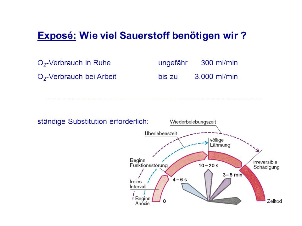 Exposé: Wie viel Sauerstoff benötigen wir